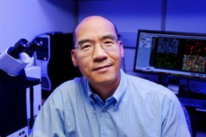 Holding on: Bond LSC scientist discovers protein prevents release of HIV and other viruses from infected cells