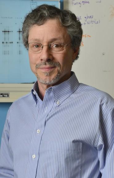 David J. Pintel