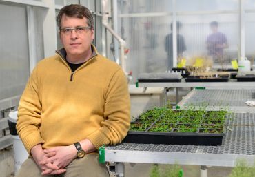 Chemical beacons: LSC scientist discovers how plants beckon bacteria to attack