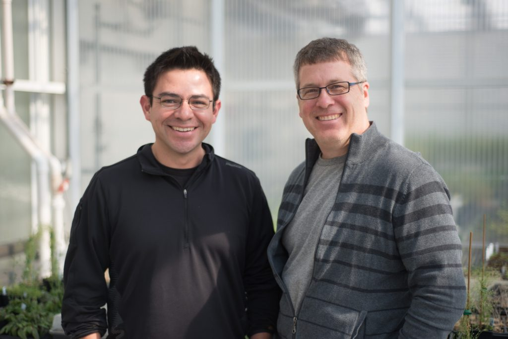 Bond LSC researchers David Mendoza (left) and Scott Peck (right) are collaborating to develop a new method for studying plant signaling pathways as they happen inside the cell. | photo by Jennifer Lu, Bond LSC