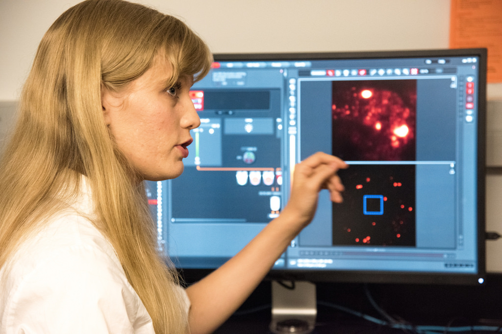 Jennifer Wolf, a first year grad student working in Stefan Sarafianos' lab, explains an image of hepatitis C infected liver cancer cells captured by a super-resolution 3-D microscope housed at MU's Molecular Cytology Core. | photo by Roger Meissen, Bond LSC