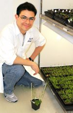 Searching for the gene: MU scientist works to find link to nutrient content of seeds