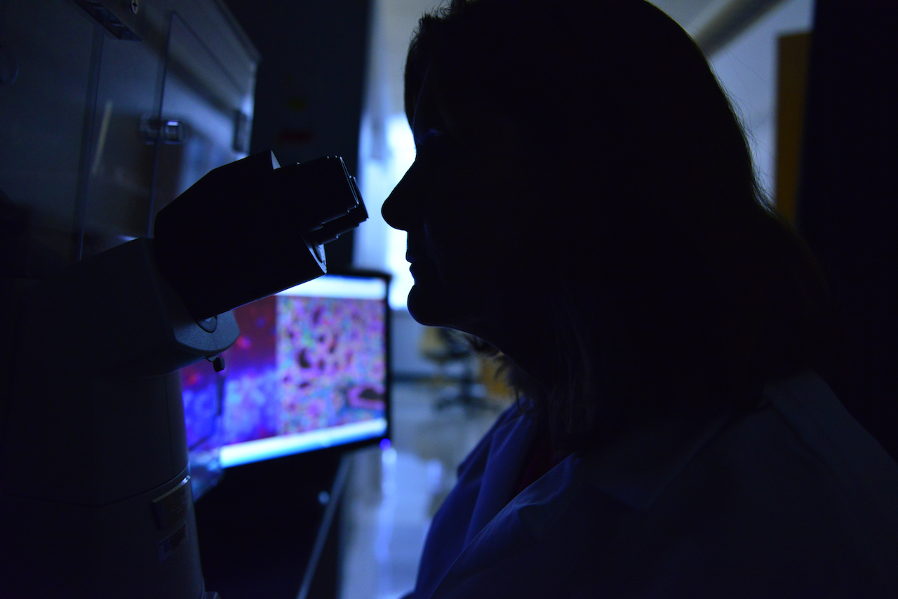 White coat, dark room. Jean Camden, a senior technician in the Weisman lab, reviews salivary gland and brain tissue samples for research on inflammation. | Photo by Paige Blankenbuehler, Bond LSC