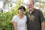 The secret of the legume: Bond Life Sciences Center researchers pinpoint how some plants fix nitrogen while others do not